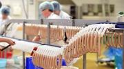 Разнорабочие на упаковку колбасы и сосисок в Польшу